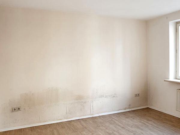 risanamento-infiltrazioni-muri-reggio-emilia